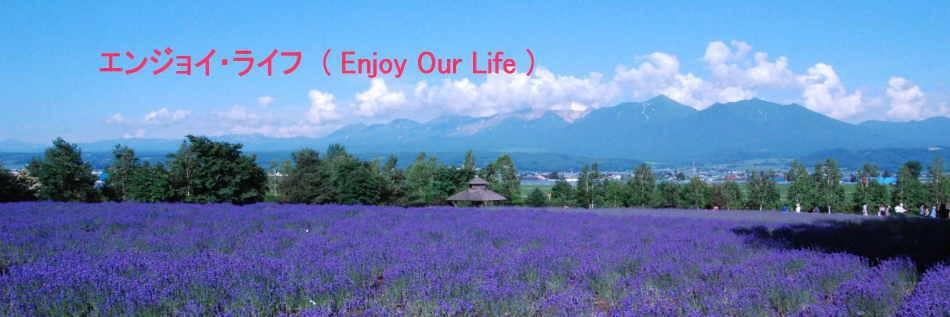 エンジョイ・ライフ (Enjoy Our Life)